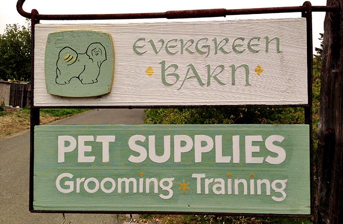 Evergreen Barn